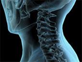 vitamine pentru preparatele coloanei vertebrale și articulațiilor